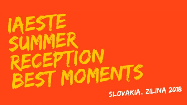 Videá – IAESTE Summer reception
